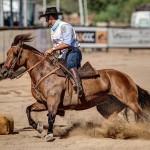 Bocal de Ouro terá transmissão online completa pelo Lance Rural