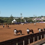 Freio de Ouro e mostra Passaporte serão atração no Paraná