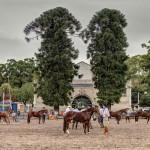 Uruguai recebe classificatória internacional do Freio de Ouro