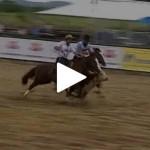 Bocal de Ouro – 1° lugar fêmeas – Guria Bragada 181 da Vendramin