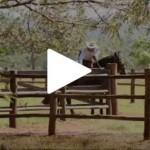 Programa Cavalos Crioulos visita Bonito, no Mato Grosso do Sul