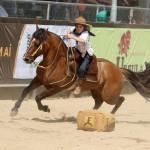 Gurizada encerra participação da raça Crioula na Expointer