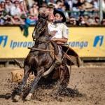 Fenômeno do Freio de Ouro, Guto Freire vai para a final com 12 cavalos