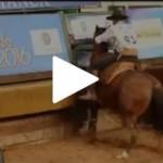 Programa Cavalos Crioulos faz cobertura emocionante da final do Freio de Ouro
