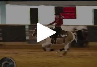 Programa Cavalos Crioulos faz cobertura do Rédeas de Ouro 2016