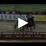 Classificatória de Esteio – 5º Lugar Machos – Esteio JB de Palermo