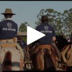 Programa Cavalos Crioulos trouxe dicas de bem-estar animal