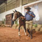 Leilão em Pelotas ultrapassa R$ 1,6 milhão em vendas