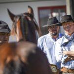 Pista de Avaré classifica Cavalos Crioulos para a Expointer