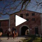 Programa Cavalos Crioulos visita a Cabanha do Mako e a Santa Edwiges