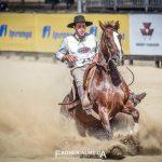 Conheça a história dos cavalos que lideram o Freio de Ouro