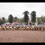 Copa do Mundo do Cavalo Crioulo acontecerá em Esteio, no Rio Grande do Sul