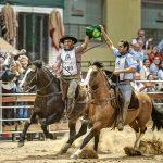 """""""Estamos no meio dos melhores cavalos crioulos que temos no mundo"""", diz Guto Freire"""