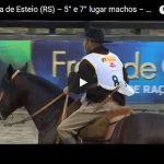 Classificatória Aberta de Esteio – 5º Lugar Machos – GT Bronze de Praça