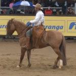 Quer saber por onde anda o cavalo Harmonia Temprano?