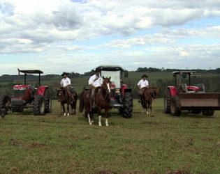 O que cavalos e tratores têm em comum?