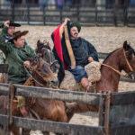 Provas Esportivas do Cavalo Crioulo têm finais unificadas em Esteio