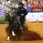 Loiro faz história nos Jogos Equestres Mundiais