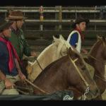 Programa Cavalo Crioulo Sem Fronteiras – Campereada