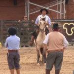 Programa Cavalo Crioulo Sem Fronteiras – Movimiento a La Rienda