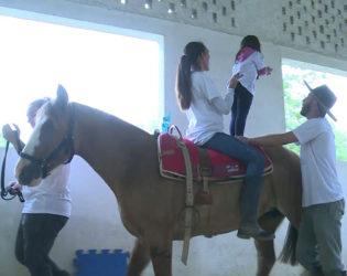 Equoterapia ajuda crianças com deficiência no Paraná