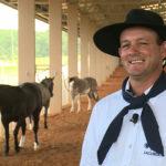 Saiba tudo o que é preciso na preparação de cavalos para provas de laço