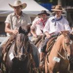 Balanço: Cavalo Crioulo avança em território brasileiro no ano de 2018