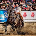 Guto Freire dá dicas para o cavalo voltar bem às competições