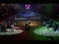 Atuação do cavalo crioulo no espetáculo Excalibur do Beto Carrero World