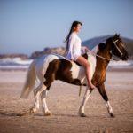 Domadora e desenhista. O cavalo crioulo por Karoliny Lopes