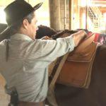 Saiba como encilhar seu cavalo para as provas do Freio de Ouro