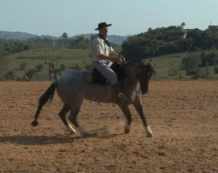 Escola de Montaria: Guto Freire ensina como conduzir o animal na volta sobre patas